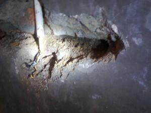 sarang rayap 1 300x225 - Rayap Bersarang di Dalam Dinding Rumah